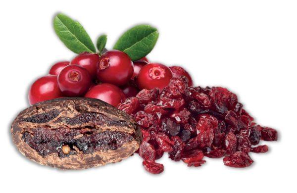 bonbon coeur cranberry et chocolat noir bio