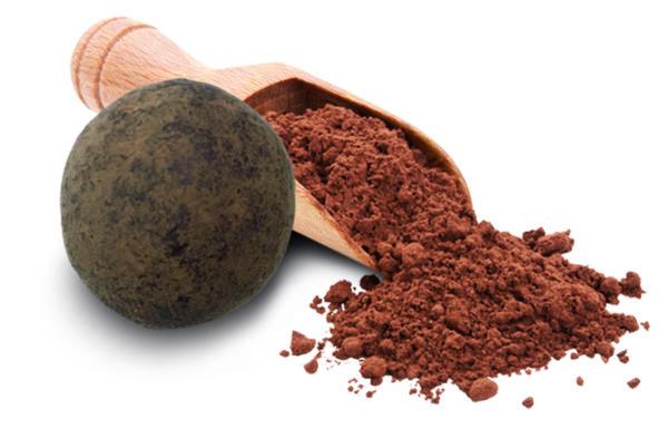 biscuit salé croustillant chocolat cacaoté confiserie adam